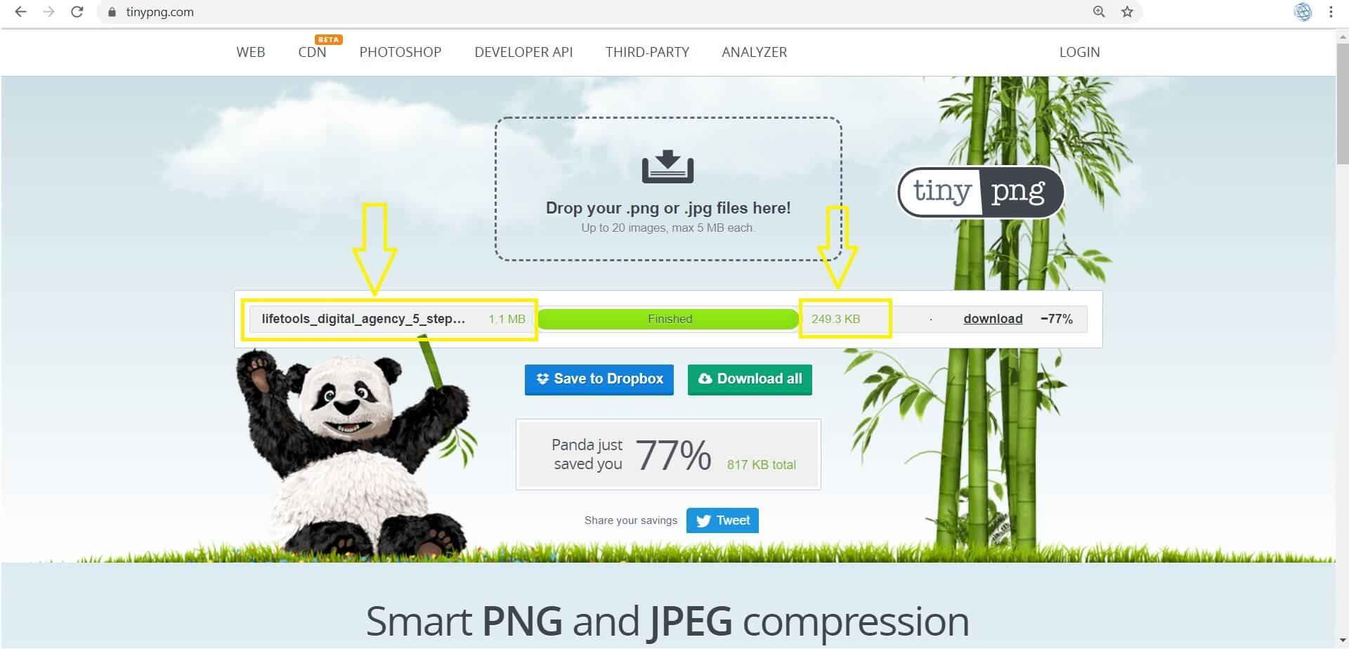 lifetools_digital_agency_compression_demo